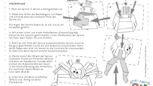 Die Bastelvorlage zum Herunterladen und Ausdrucken für eine Spinne zum Basteln aus Papier. | Rechte: KiKA