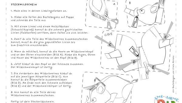 Steckwildschwein | Rechte: KiKA
