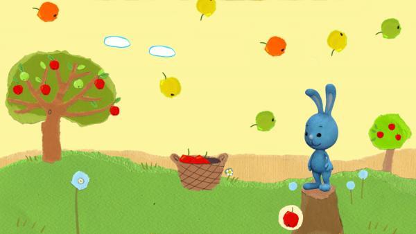 Fang die Äpfel auf! | Rechte: KiKA/Katrin Lahr