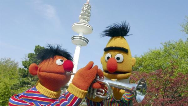 Ernie bittet Elmo, beim Singen das Echo zu sein und Bert ermuntert Ernie, auf seiner Trompete immer lauter zu spielen. | Rechte: KiKA/ NDR/Studio Hamburg