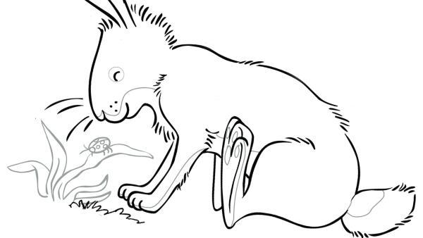 Kleiner brauner Hase | Rechte: SLR, SCRAWL, KiKA & HR